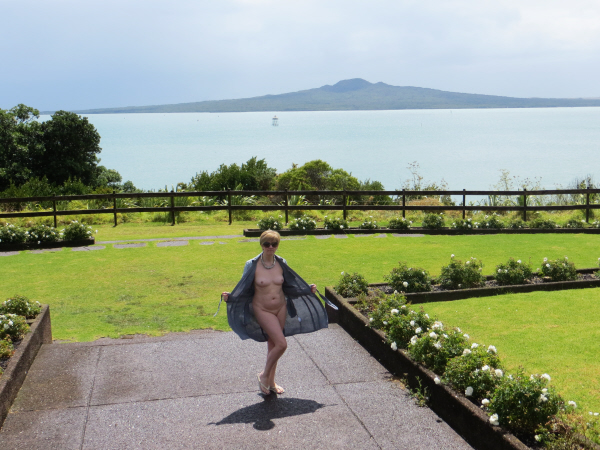 Modesty Ablaze Rangitoto Island